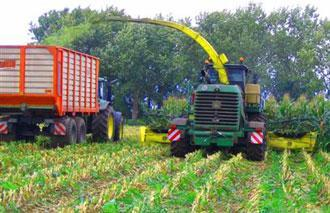 Harvest Protection - MAFEX-Silage
