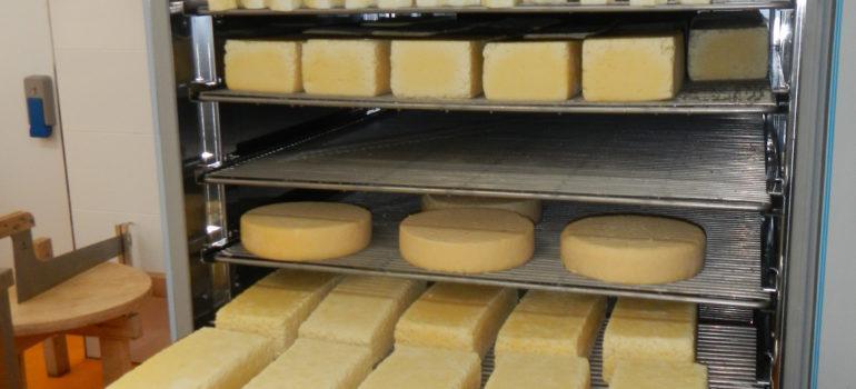 Käse-Reife-Anlage - null