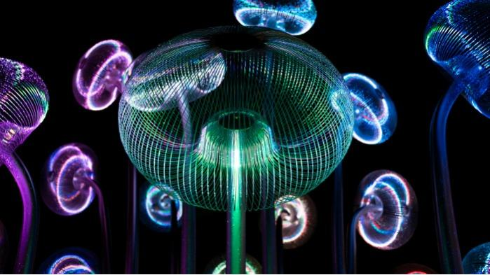 Bubble Forrest (Foresta delle bolle )  -