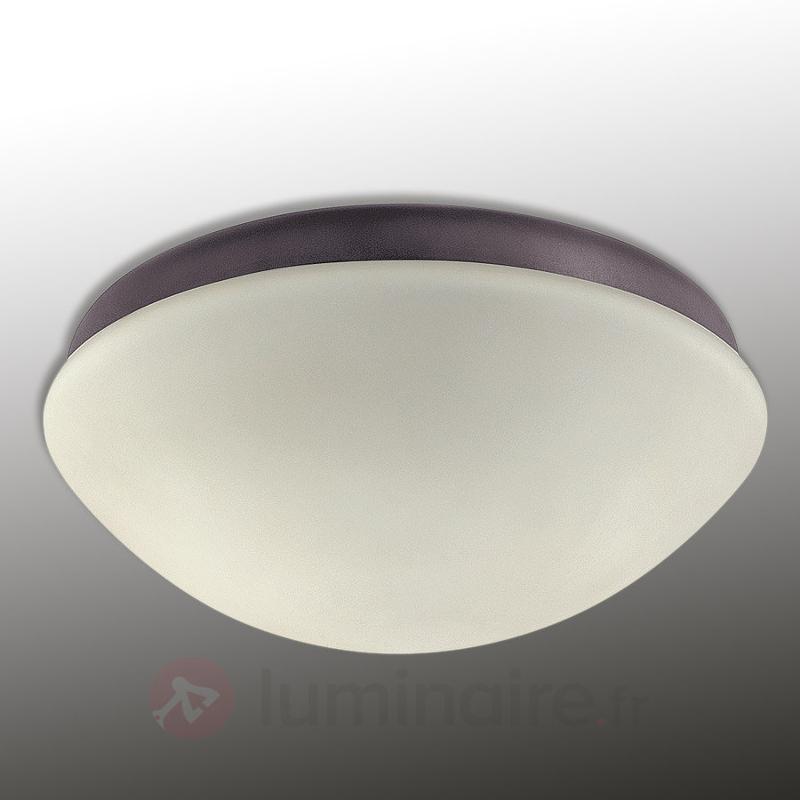 Lampe pr ventil. plafond Outdoor Elements, bronze - Accessoires pour ventilateurs de plafond