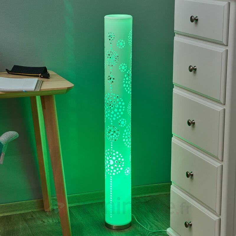 Lampadaire LED Mirella, RGB avec télécommande - Lampadaires LED