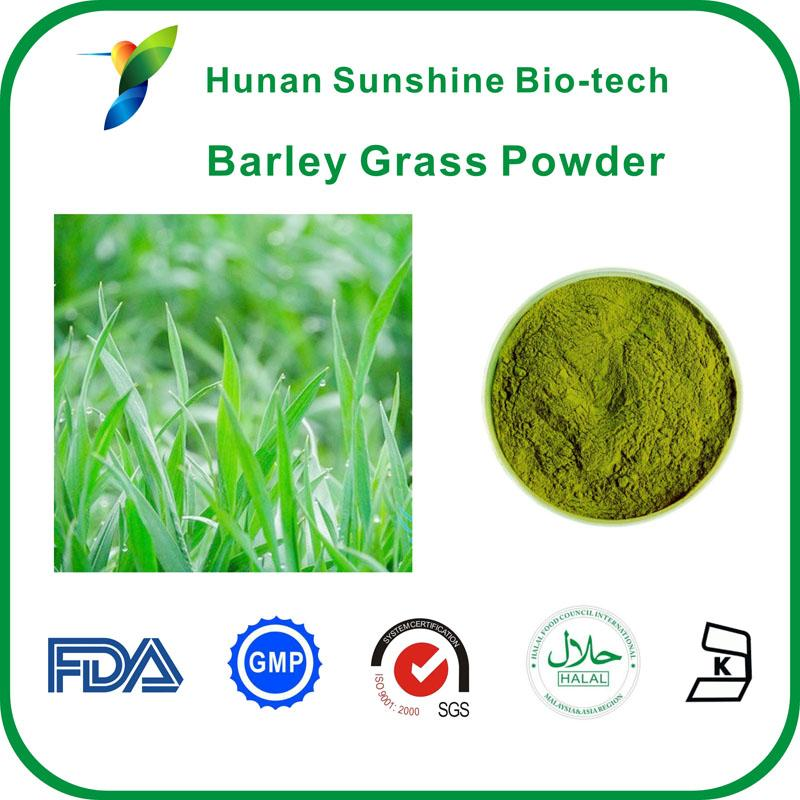 Barley Grass Powder - Fruit&Vegetable Powder