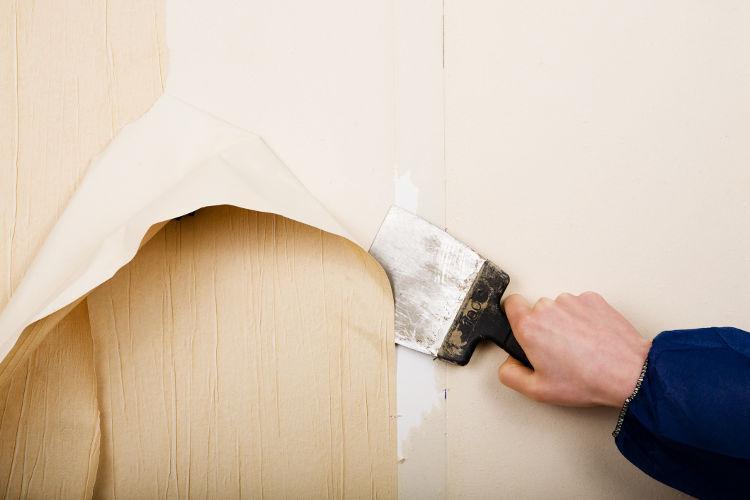 IDS SP140 - Détergent pour ramollir la colle d'ancienne tapisserie