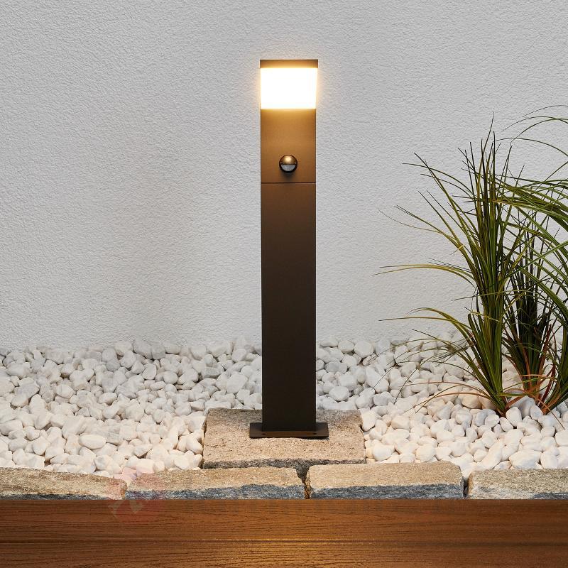 Timm - borne lumineuse LED avec capteur, 60 cm - Bornes lumineuses avec détecteur