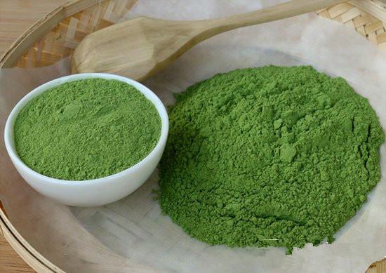 Indian Moringa Powder Manufacturer Exporter