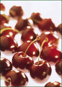 Cherries - Bruine Bigarreau