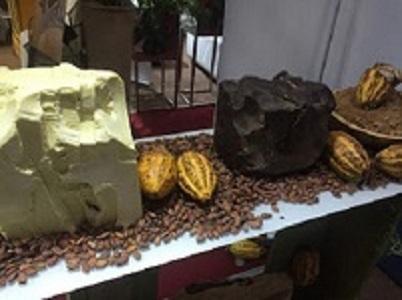 CACAO - POUDRE DE CACAO  ,BEURRE DE CACAO;   FÈVES DE CACAO