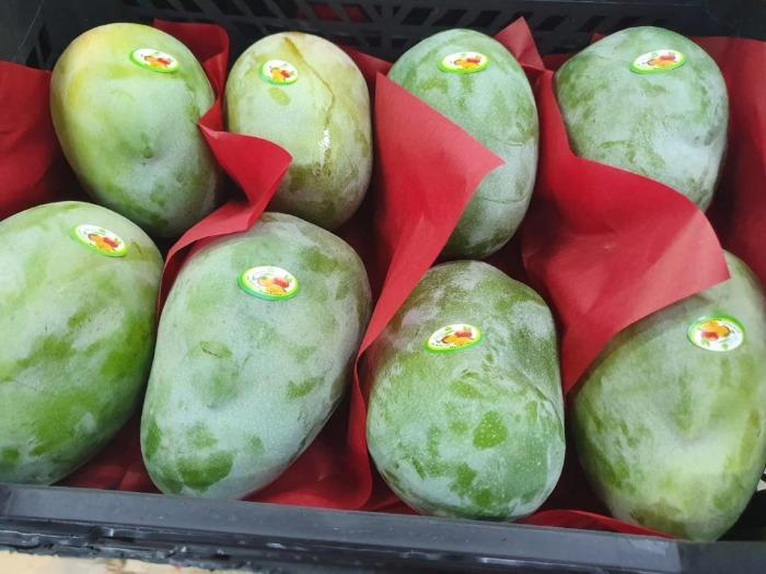 Mangoes - Organic