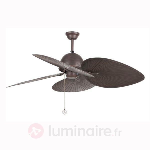 Magnifique ventilateur de plafond CUBA brun