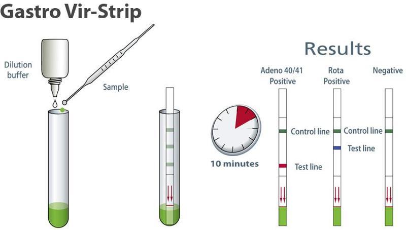 Detection of Rotavirus & group F Adenovirus - Medical test - null