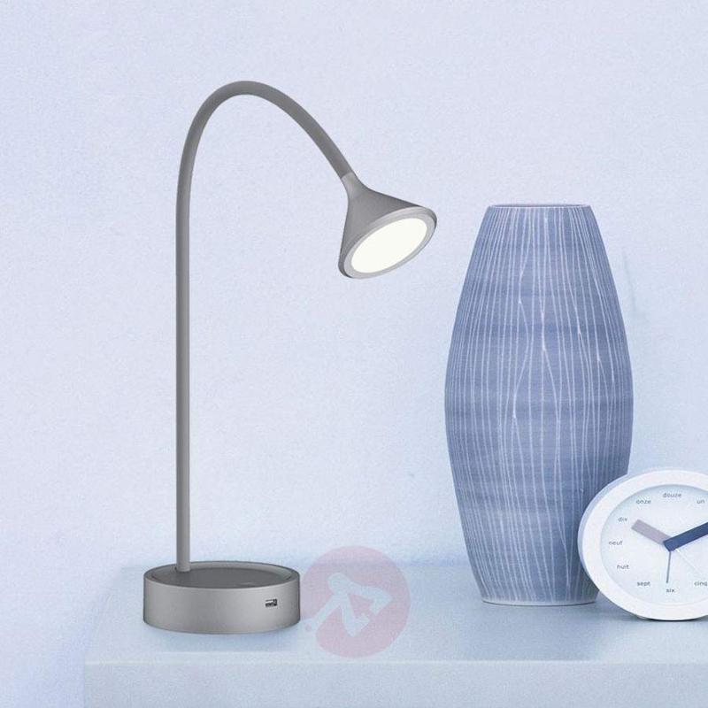 Adjustable LED table lamp Ellister with USB port - Desk Lamps