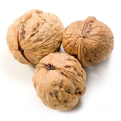 Inshell walnut - dried, thin skinned