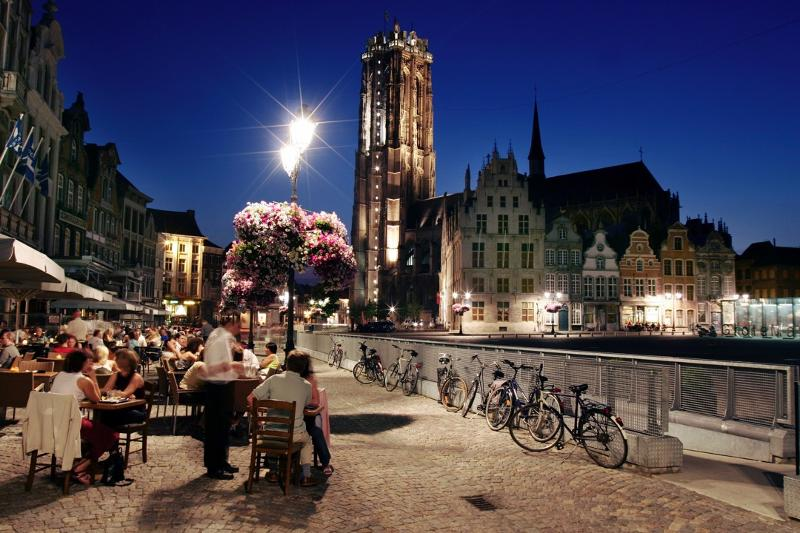 The Best of Belgium and Luxembourg: 13 towns in 7 days - Service- Tour operator