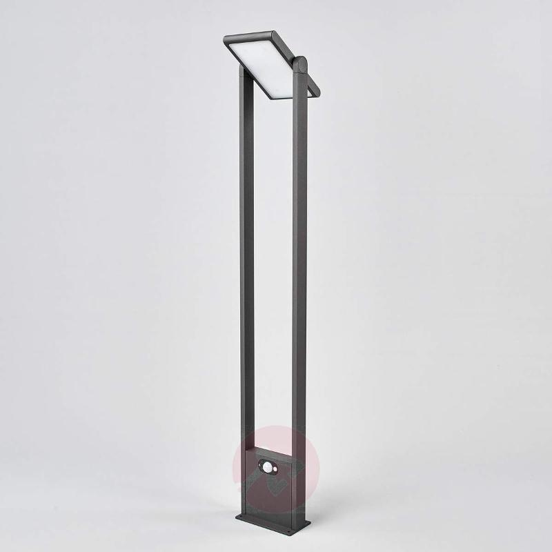 Path light Valerian with solar-powered LEDs - Solar Motion Sensor Lights