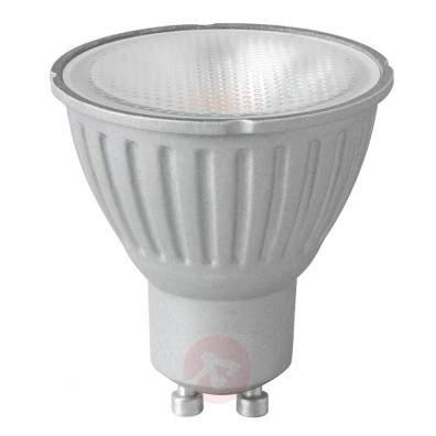 GY6.35 50W PHILIPS Capsuleline LV-halogen bulb - light-bulbs