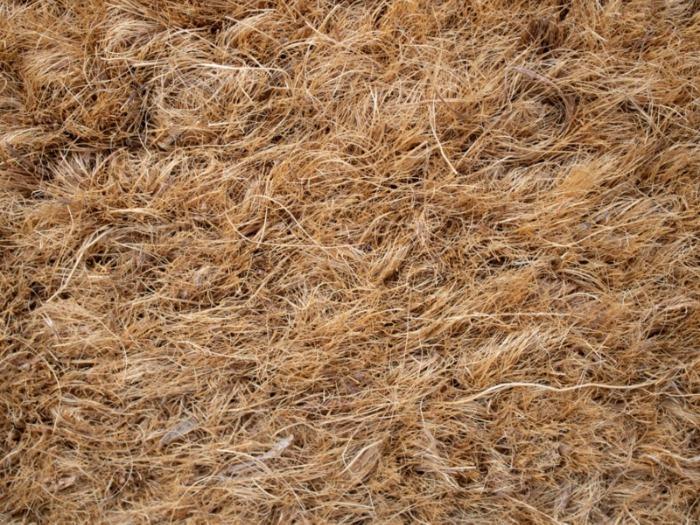 Bourre de noix de coco( le coir) -