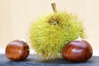 Chestnuts  -
