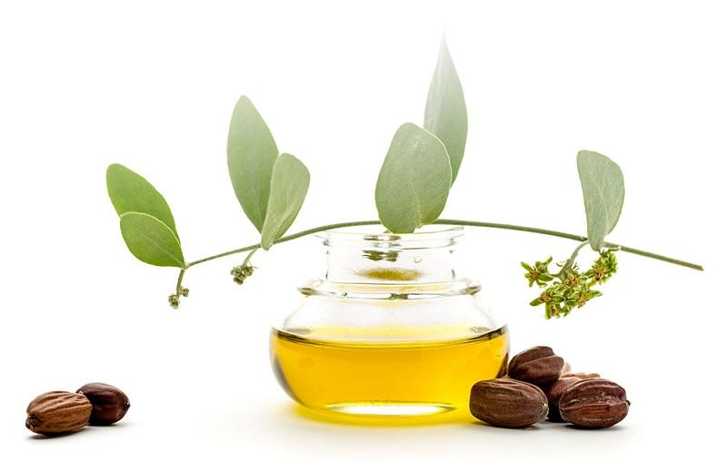Organic jojoba oil - Organic jojoba seed oil