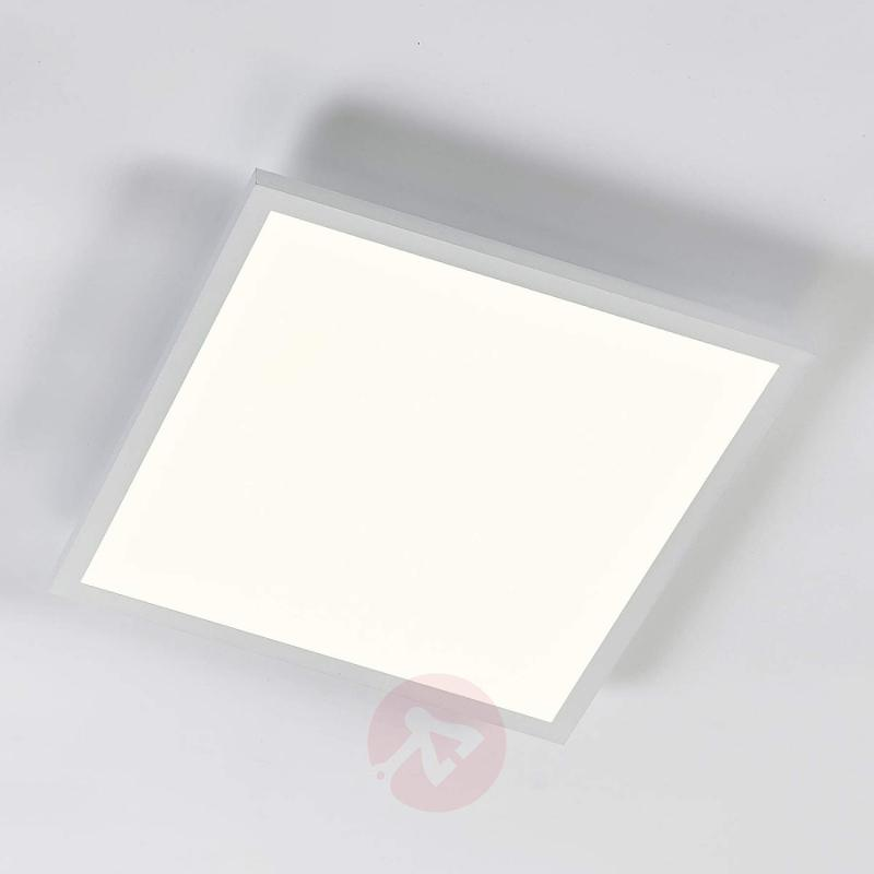 Adj. luminous colour LED panel Philia, 59.5 cm - indoor-lighting