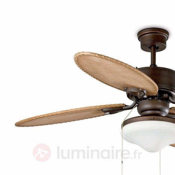 Ventilateur de plafond LOMBOK avec lampe - Ventilateurs de plafond lumineux