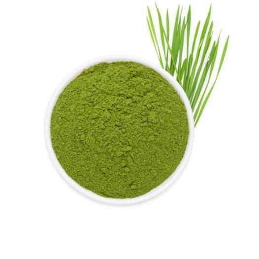 Weizengras - null