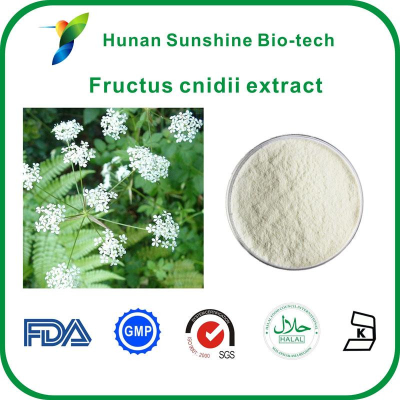 Fructus cnidii extract - Plant Extracts