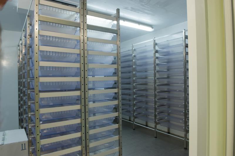 Modular transport and storage system for hospitals