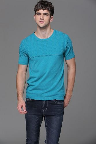 Col rond manches courtes pull homme - Col rond ; Lac bleu