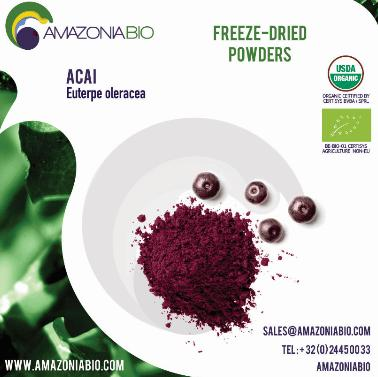 Organic Açaí Freeze-Dried Powder with 20% of Tapioca - Try before purchase? Please contact us for free samples