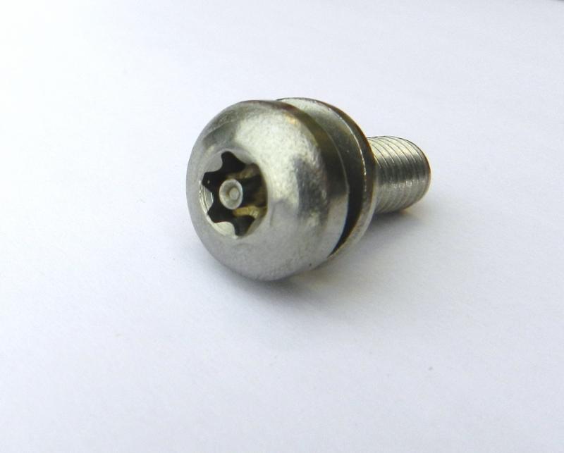 Anti-theft screws - null