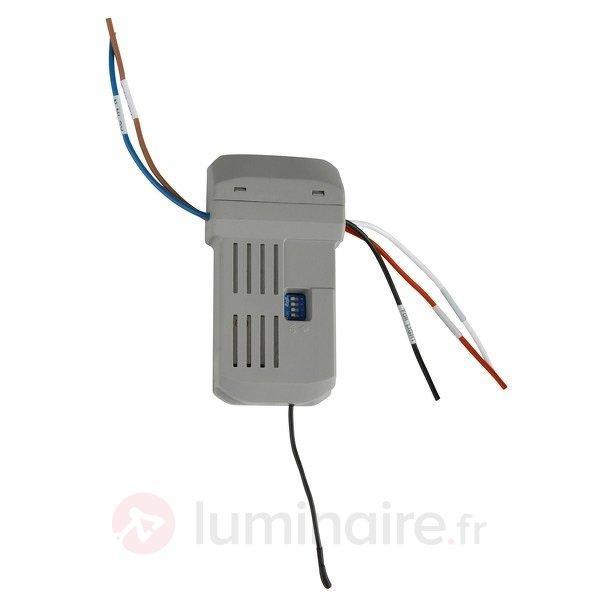 Télécommande de luxe pour ventilateurs de plafond - Accessoires pour ventilateurs de plafond