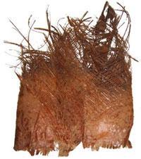 Kokosfaser / Kokosborke - null