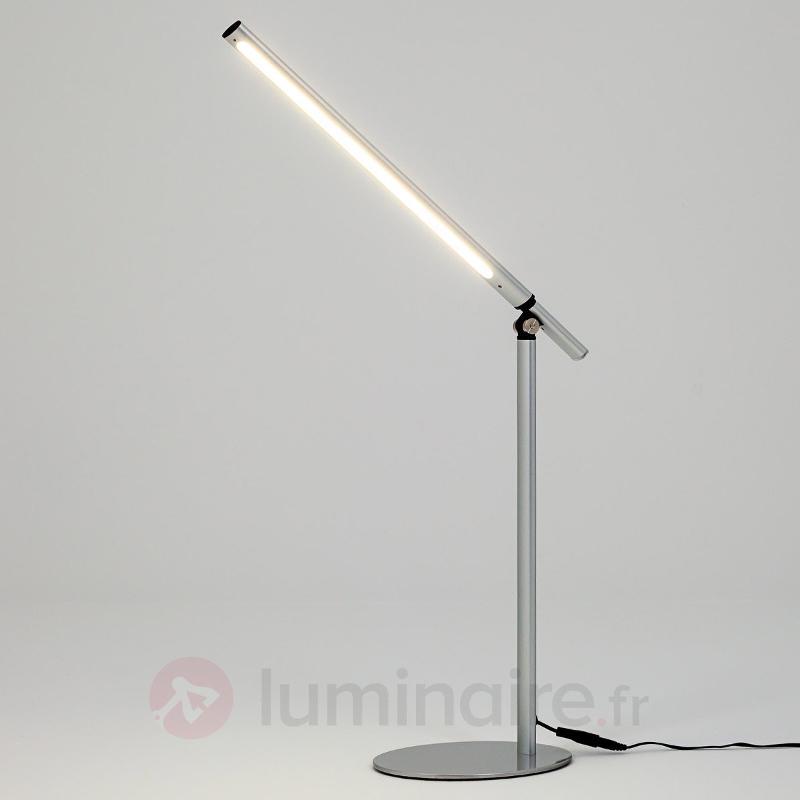 Lampe à poser LED Kolja très moderne gris argenté - Lampes de bureau LED
