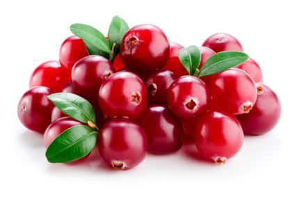Cranberry-Öl - null