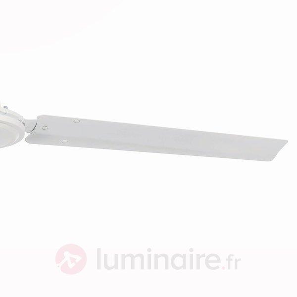 Ventilateur de plafond ECO INDUS blanc - Ventilateurs de plafond modernes