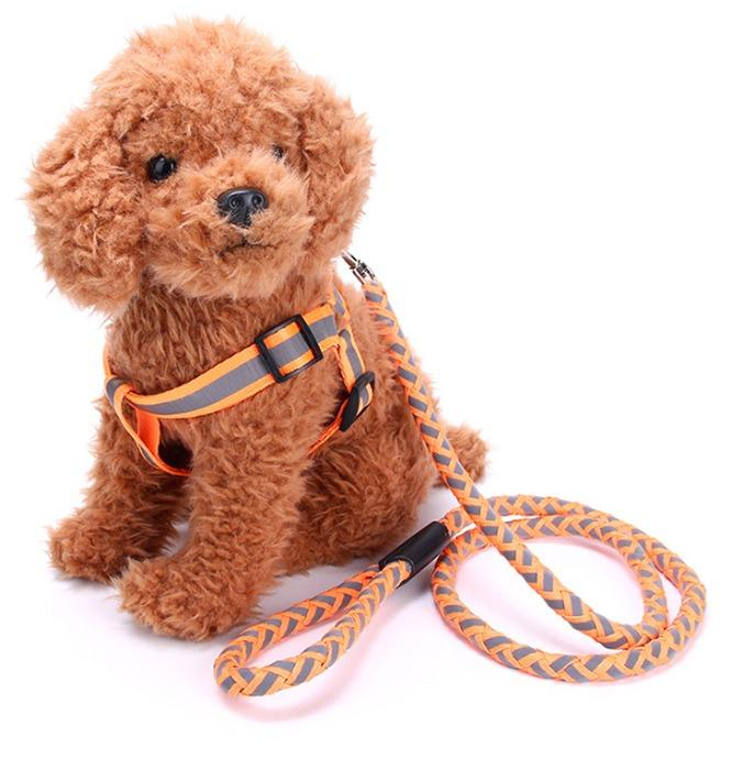 Dog Leashes - We supply different styles dog collar, Dog Leashes