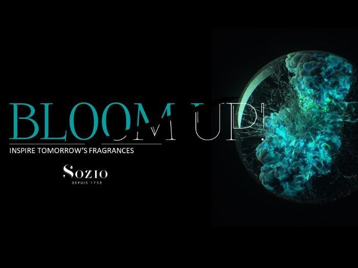 """Bloom up"" -"
