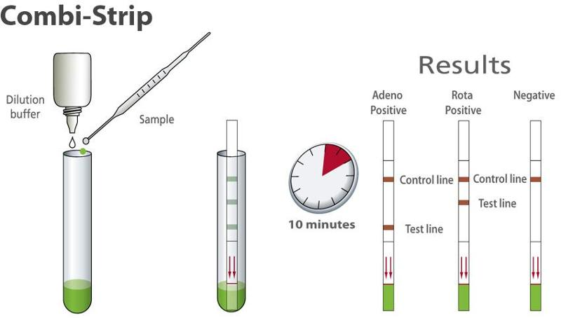 Rapid test for detection of Rotavirus & Adenovirus - null