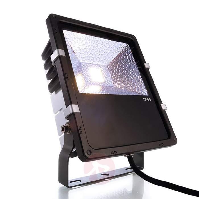 Outdoor spotlight Flood with 50 W LED, 6,000 K - Outdoor Spotlights