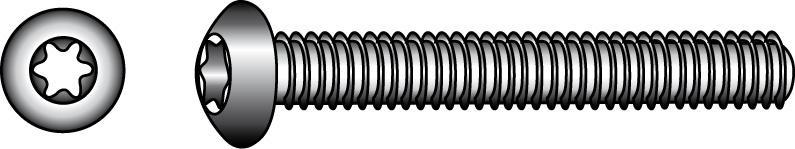 Schrauben mit abgeflachtem Halbrundkopf und Innensechskant - Material A2 | A4