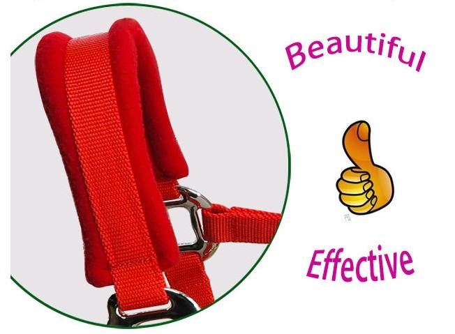 horse halter with 2.5 meters long horse lead rope - horse halter