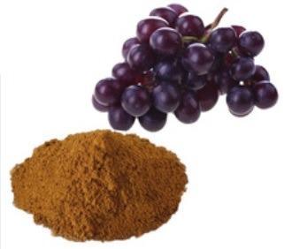 Экстракт виноградных косточек  - CAS: 84929-27-1