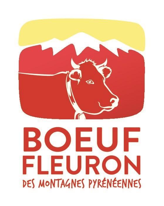BOEUF FLEURON DES MONTAGNES PYRENEENNES vendu en 1/2... - Viande et volailles