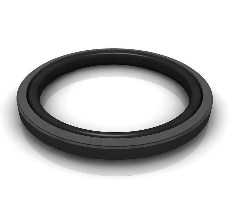Piston Seals - Turcon® Glyd Ring® T