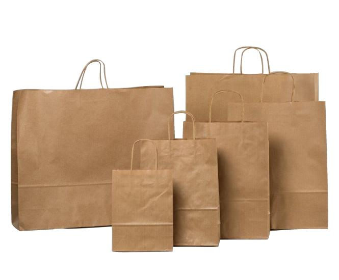 kraft paper bag - twisted handle and flat handle bag