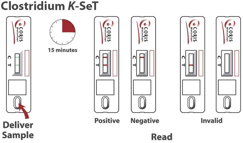 K-SeT - test for detection of Clostridium difficile antigen - null