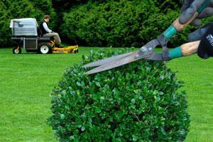 Entretien de votre jardin et espace vert clermont-ferrand