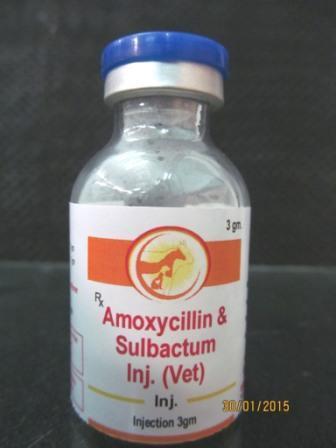 Veterinary Amoxicillin Sulbactam Injection  - Veterinary Amoxicillin Sulbactam Injection