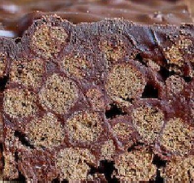 barrette al cioccolato senza lattosio