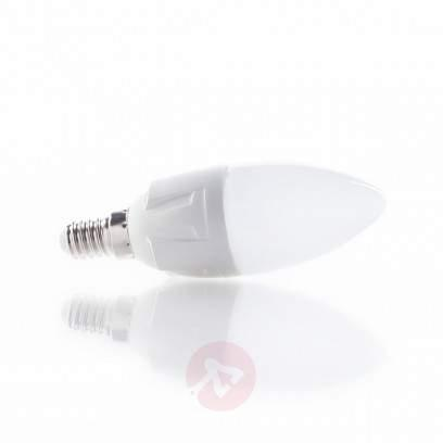 E14 20W halogen bulb Classic B candle shape - light-bulbs